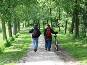 پیادهروی بهترین ورزش برای افراد مبتلا به دیابت است