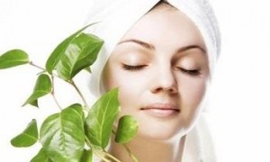 گیاهان دارویی مؤثر در نگهداری پوست صورت و بدن